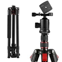 BC Master Camera Tripod Dslr, 75-inch Tall and Portable Alum